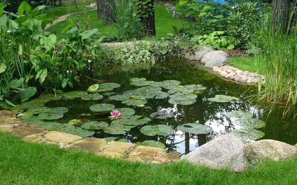 Jak zrobić w ogrodzie oczko wodne: projekt i budowa